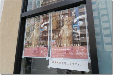 猫の写真展『ねこ専2017』へ!五十嵐健太さんの飛び猫写真集にサインをもらってきました!